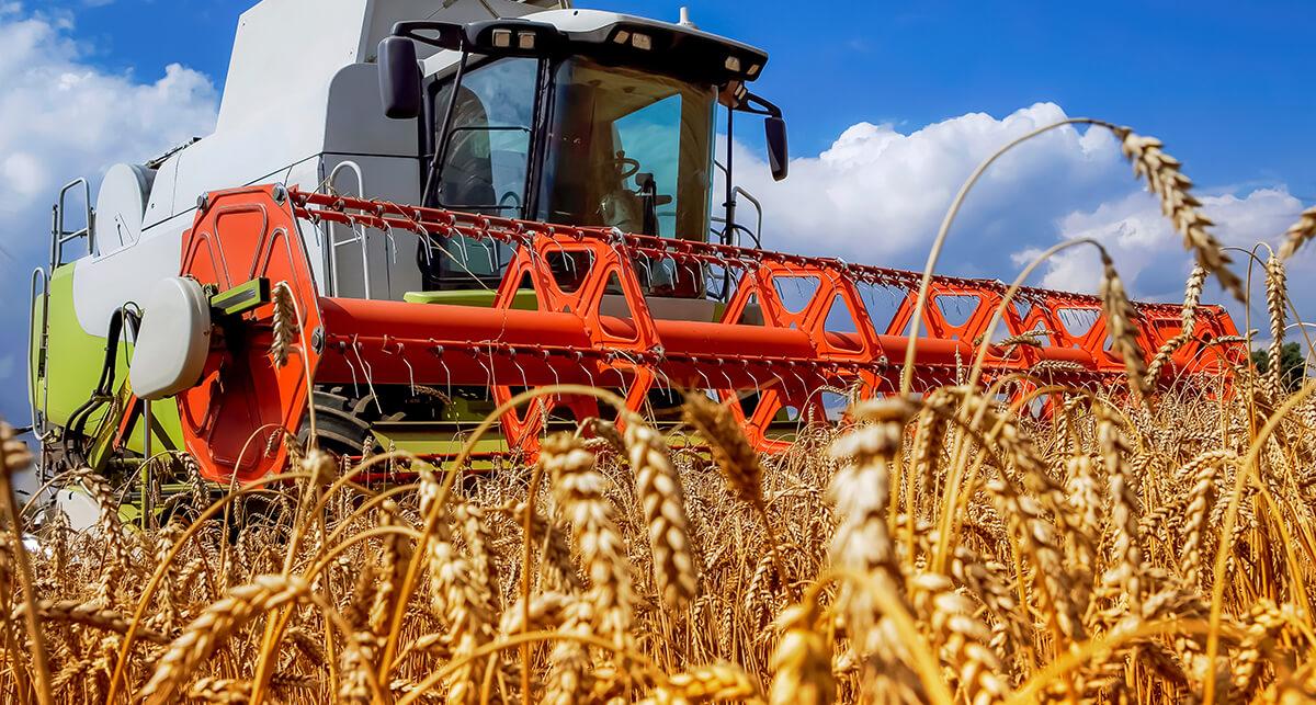 limpeza de máquinas agrícolas