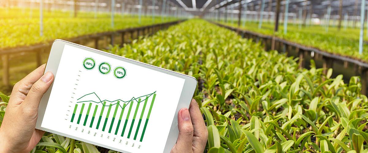 tendências da agricultura
